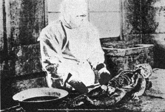 Фото №2 - Как японцы русских убивали и калечили во славу науки