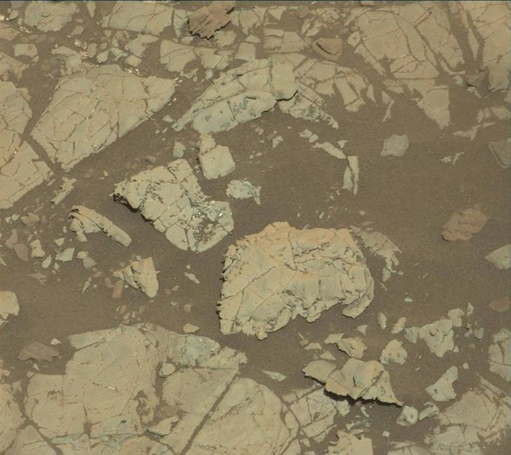 Фото №3 - NASA скрывает доказательства того, что на Марсе была жизнь! Громкие разоблачения устами отважного ученого