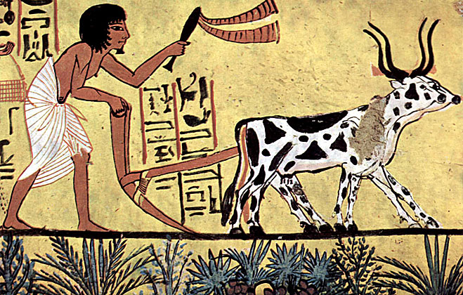 Пахарь в Древнем Египте