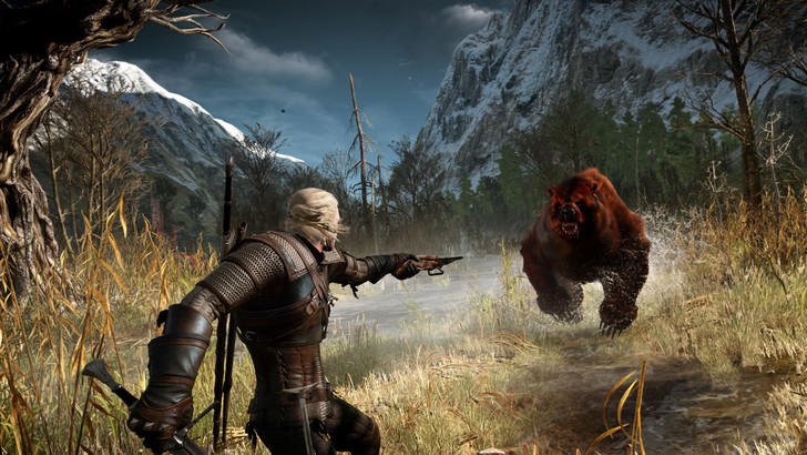 Фото №14 - 20 фактов о грядущей игре The Witcher 3: Wild Hunt