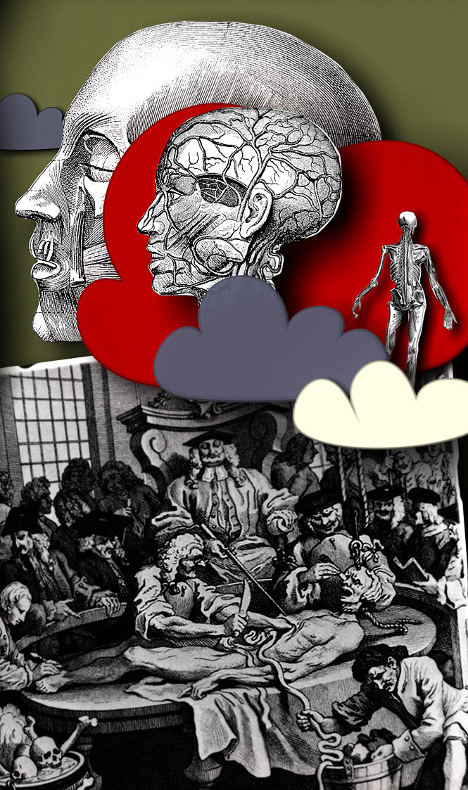 Жертвы анатомии