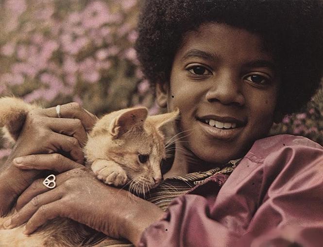 Фото №3 - 15 фактов о Майкле Джексоне