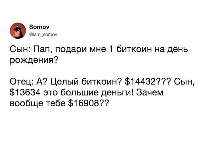 Лучшие шутки и День Конституции Российской Федерации