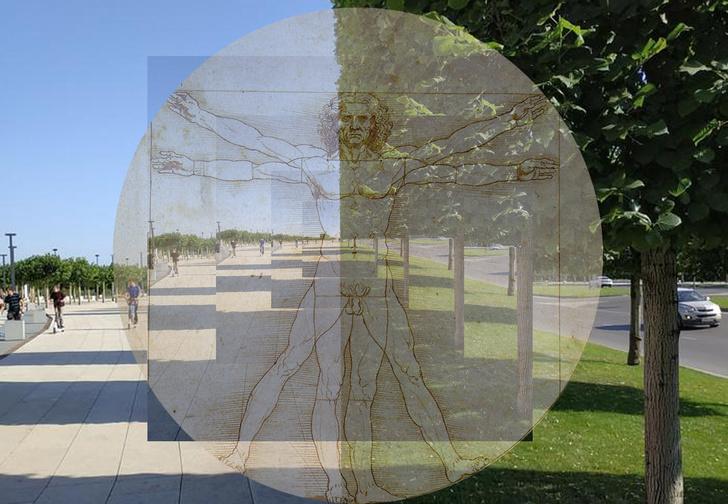 Фото №1 - Найдена оптическая иллюзия «для перфекционистов»