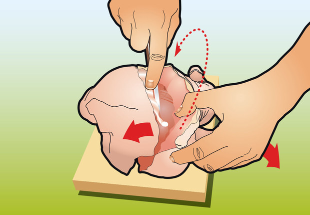 Фото №3 - Как вытащить все кости из курицы: инструкция в картинках