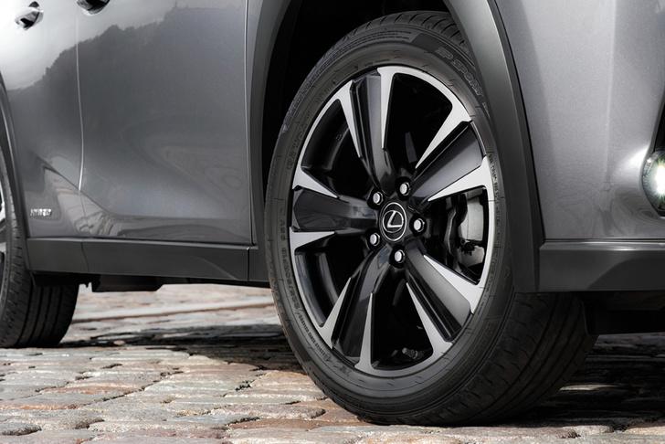 Фото №6 - Lexus UX: необыкновенный кросс