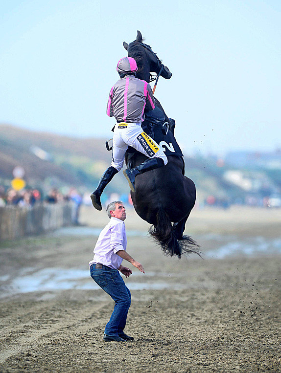 Хроники пикирующего коня