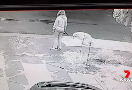 Мужчина придумал оригинальный способ пристыдить собаководов, которые не убирают за собаками