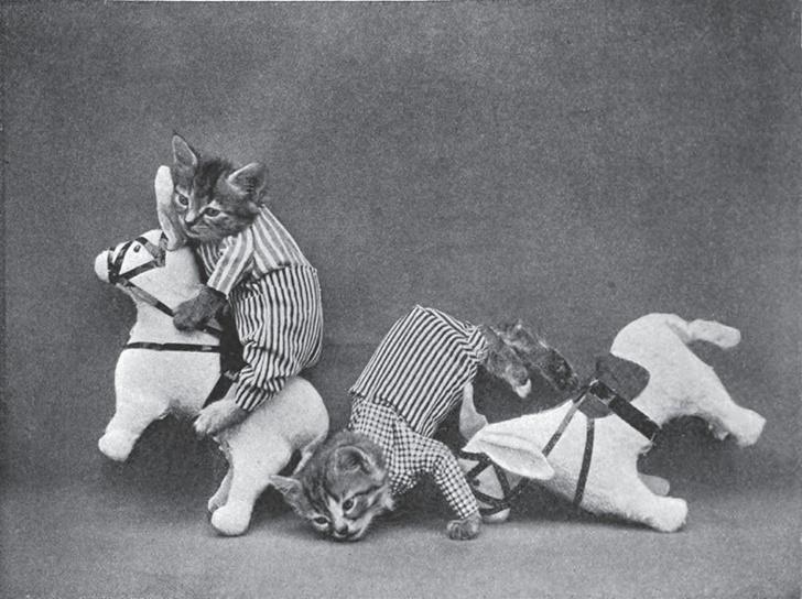 Близнецы Царапкины играют