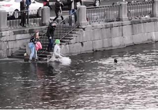 Парень в Питере кинулся в ледяную воду, чтобы спасти парня, который кинулся спасать собаку (геройское видео)