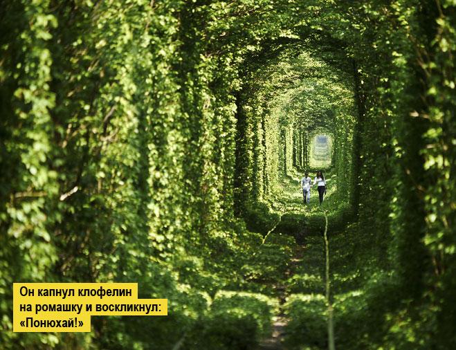 Фото №1 - Место месяца: Клевань, Украина