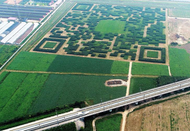 Фото №1 - Великая китайская роща — единственный сад, который озадачивает из космоса